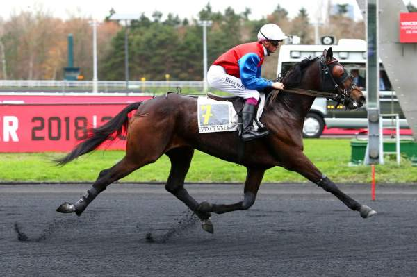 Photo de ELINO BILOU cheval de TROT MONTE
