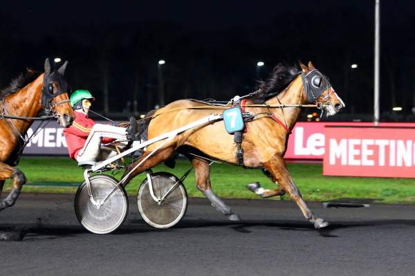 Photo de EASY ATOUT cheval de TROT ATTELE