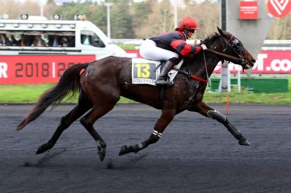 Photo de DEESSE CARISAIE  cheval de TROT ATTELE