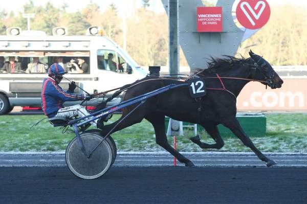 Photo de EL CONDOR PILLIERE cheval de TROT ATTELE
