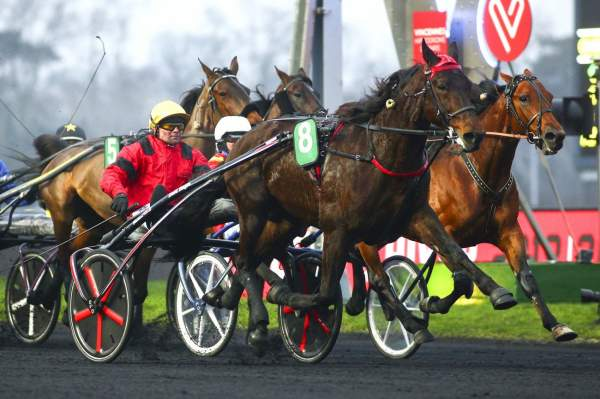 La photo de Bold Eagle Quinté+ Pmu Grand Prix de Bourgogne 2018 à Paris Vincennes