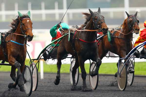 La photo de Epona De L'aunay
