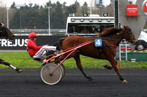 Photo de DOLLY DE CHENU cheval de TROT ATTELE