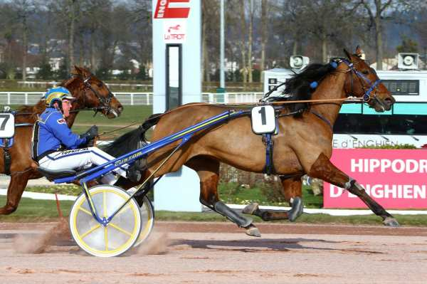 Photo de TITANIUM GAR cheval de TROT ATTELE