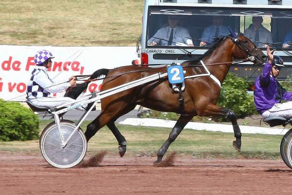 La photo de VIKING D'ORION