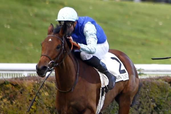 Photo de MALAKITE cheval de PLAT