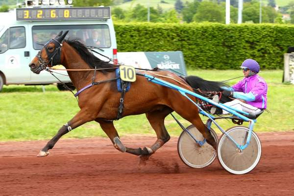La photo de DESTRIER JIEL