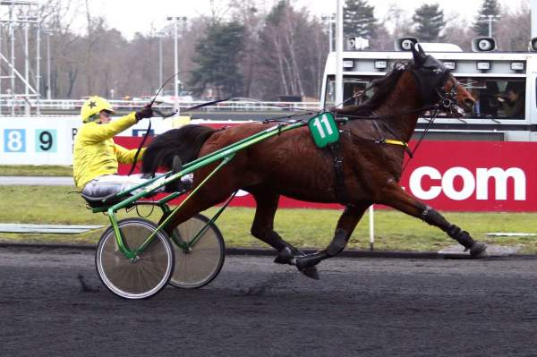 La photo de DERBY DU DOLLAR