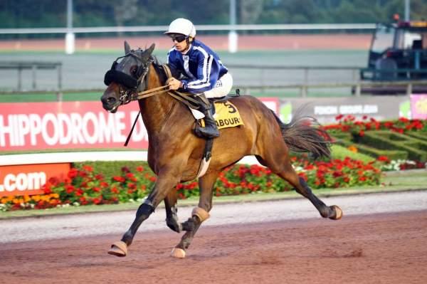 Photo de EAST RIVER cheval de TROT MONTE