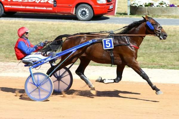 Photo de EURO MAKER cheval de TROT MONTE