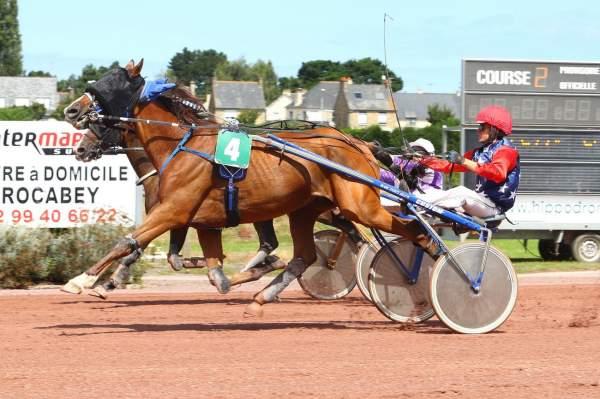 Photo de AQUI MADRIK cheval de TROT ATTELE