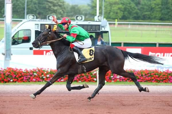 DEKER MAHCATH - La fiche CANALTURF du cheval, performances pmu, pédigré,  évolution de la cote en direct, résultats rapports, courses 2020