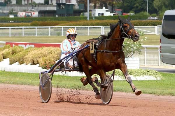 Photo de FEYDEAU SEVEN cheval de TROT ATTELE