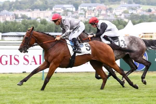 Photo de LINE DRUMMER cheval de PLAT