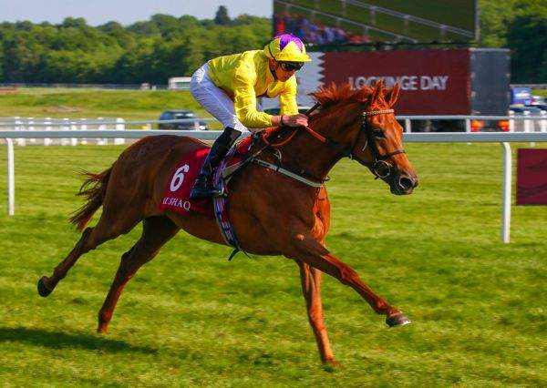 La photo de Sea Of Class