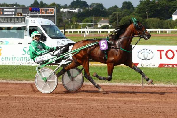 Photo de FRANKLIN PARK cheval de TROT ATTELE