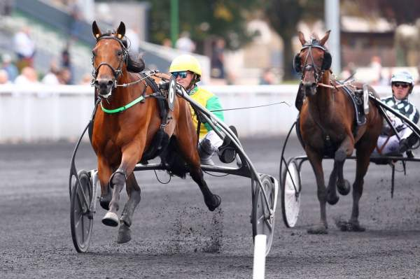 La photo de Face Time Bourbon Course PMU PRIX DE MONTELIMAR à Paris Vincennes