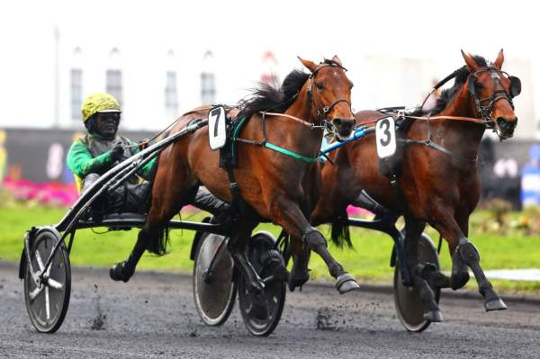 La photo de Face Time Bourbon Course pmu PRIX CHARLES TIERCELIN à Vincennes