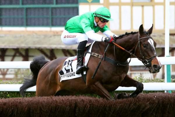 Photo de THE REVENANT cheval de STEEPLE CHASE