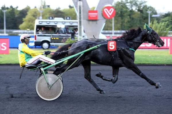 GAMAY DE L'ITON - La fiche CANALTURF du cheval, performances pmu, pédigré,  évolution de la cote en direct, résultats rapports, courses 2021