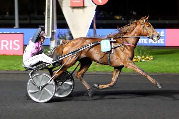 HOOKER BERRY - La fiche CANALTURF du cheval, performances pmu ...