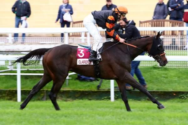 Photo de PURPLE VICTORY cheval de PLAT