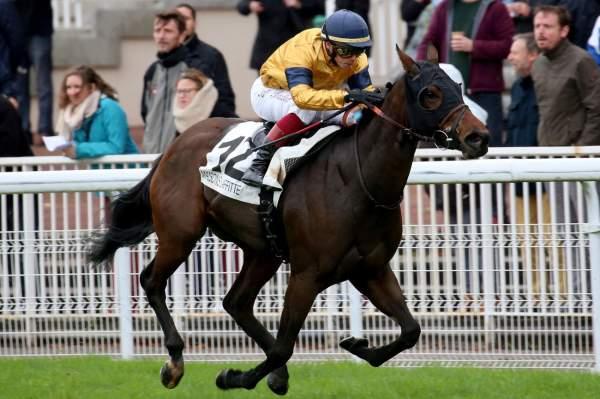 Photo de LA MIRADA cheval de PLAT