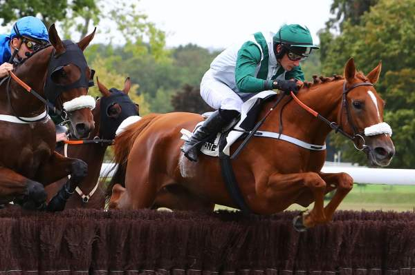 Photo de LA MANDRAGOLA cheval de STEEPLE CHASE