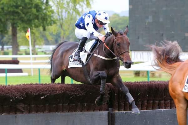 Photo de KAPTEEN cheval de HAIES