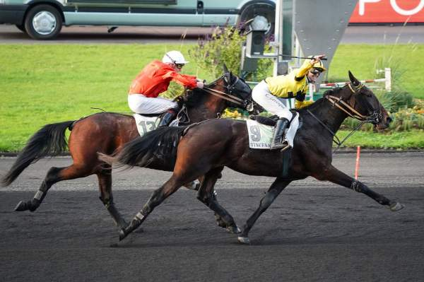 La photo de Flicka De Blary Course Pmu Prix Olry-Roederer 2019 à Paris Vincennes