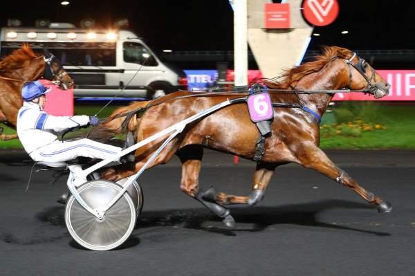 GAME HAUFOR - La fiche CANALTURF du cheval, performances pmu, pédigré,  évolution de la cote en direct, résultats rapports, courses 2021