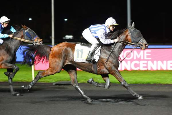 Photo de GRANVILLAISE BLEUE cheval de TROT MONTE