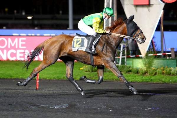 FIGARO DE LARRE - La fiche CANALTURF du cheval, performances pmu, pédigré,  évolution de la cote en direct, résultats rapports, courses 2020