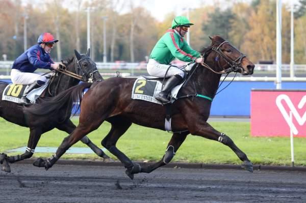 Photo de GELINOTTE DU RIB cheval de TROT MONTE
