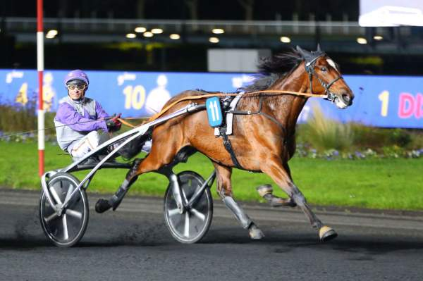 Photo de HELGAFELL cheval de TROT ATTELE