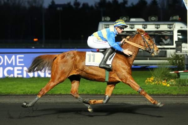 Photo de ETOILE DE QUESNY cheval de TROT ATTELE