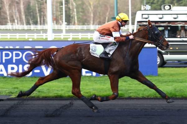 Photo de FAUVE DE FELLIERE cheval de TROT MONTE