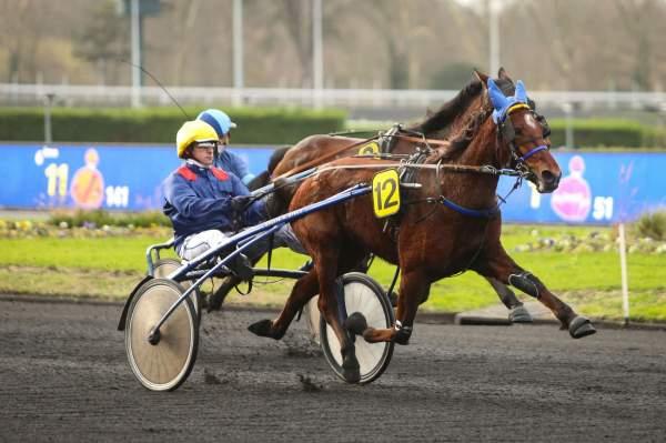 Photo de GIRL DES MOTTES cheval de TROT ATTELE