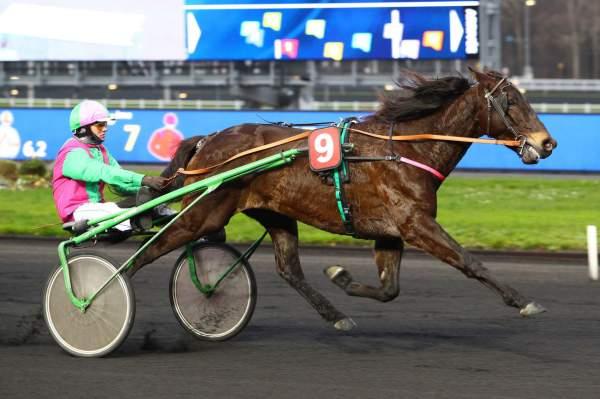 Photo de EMINENT D'ORGERES cheval de TROT ATTELE