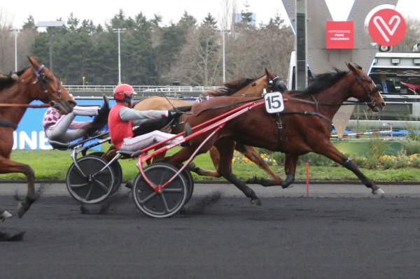 La photo de Chica De Joudes Quinté+ Pmu Prix de Bar-le-Duc 2019 à Paris-Vincennes