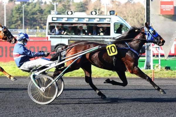 Photo de VICTOR FERM cheval de TROT ATTELE