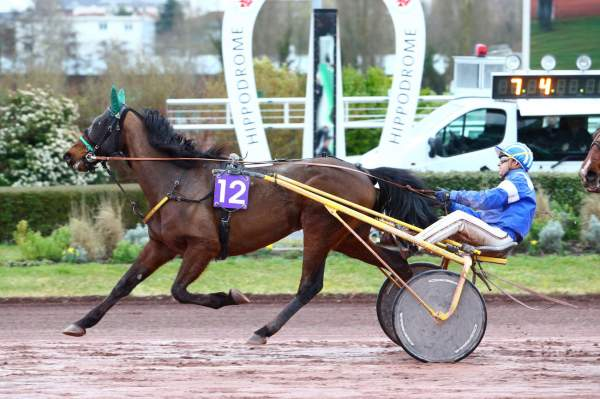 ENZO RIVER - La fiche CANALTURF du cheval, performances pmu ...