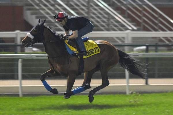 La photo de Almond Eye Sakae Kunieda, Dubai Turf 2019