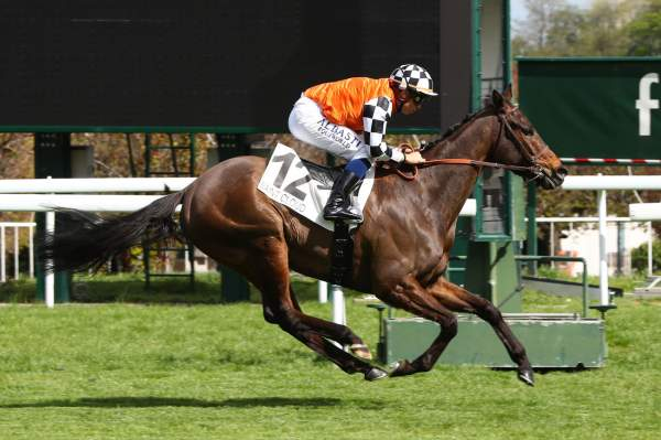 La photo de JUMPIN' JACK FLASH Quinté+ Pmu PRIX DE PAU à Saint-Cloud