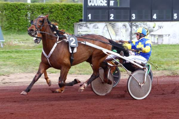 Photo de DEFI DE NAY cheval de TROT ATTELE