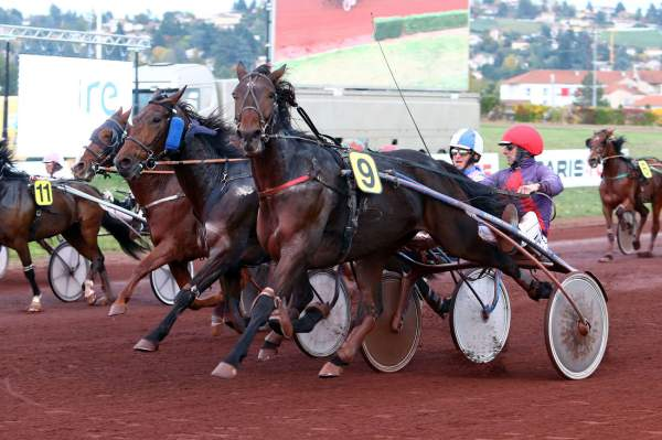 Photo de COSTA JULRY cheval de TROT MONTE