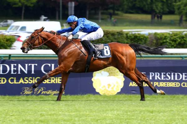 La photo de Persian King
