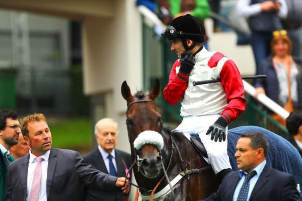 La photo de For Fun Course Pmu PRIX STANLEY à Auteuil,  Bertrand LESTRADE