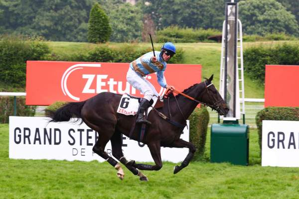 La photo de Carriacou Quinté+ Pmu du ZEturf Grand Steeple-Chase de Paris 2019, Davy RUSSEL, à Auteuil