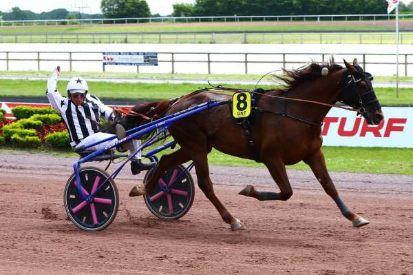 La photo de Bachar Quinté+ Pmu GRAND NATIONAL DU TROT PARIS-TURF à La Capelle